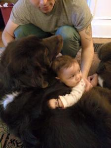 Make no mistake- these are HER dogs.